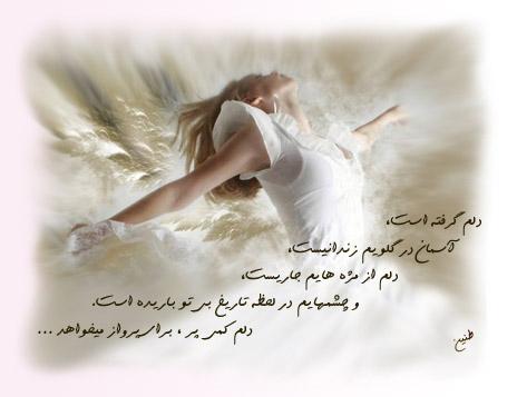 دلم پر شده از دغدغه های بی خیالی ؛ پر شده از من ، از تو ... پر از آرزوی پرواز ...